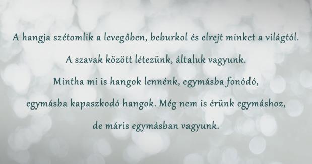 idezet_pillangolany_04